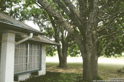 350 Sea Willow Dr, Marion, TX 78124 - #: 1331653
