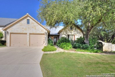 252 Well Springs, Boerne, TX 78006 - #: 1333025