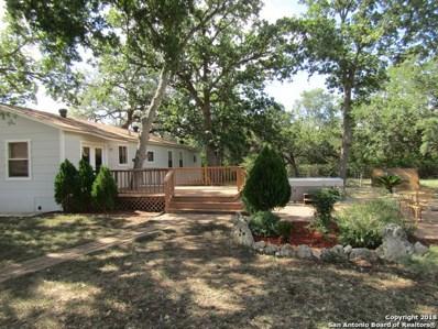 108 Oak Park Ln, Spring Branch, TX 78070 - #: 1333842