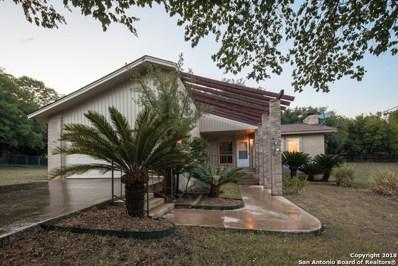 679 Irene Dr, Canyon Lake, TX 78133 - #: 1334978