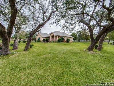 164 Oak Fields Dr, Floresville, TX 78114 - #: 1341261