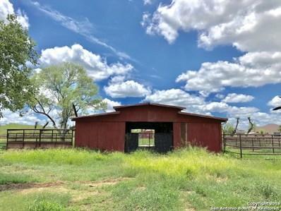 1185 County Road 214, McCoy, TX 78113 - #: 1341887