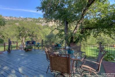 8570 River Rd, New Braunfels, TX 78132 - #: 1342150