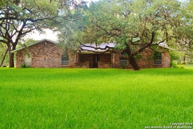 113 Cynthia Dr, Pleasanton, TX 78064 - #: 1342294