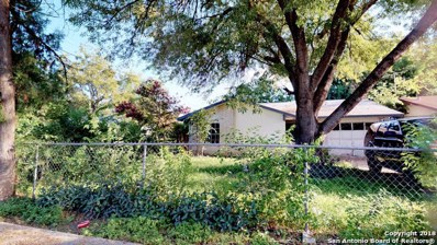 1802 Hermine Blvd, San Antonio, TX 78201 - #: 1343189