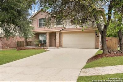 206 Hollow Grove, San Antonio, TX 78253 - #: 1343685