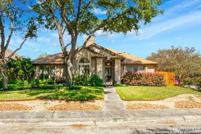 4603 Black Oak Woods, San Antonio, TX 78249 - #: 1343925