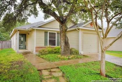 111 Mallow Grove, San Antonio, TX 78253 - #: 1344695