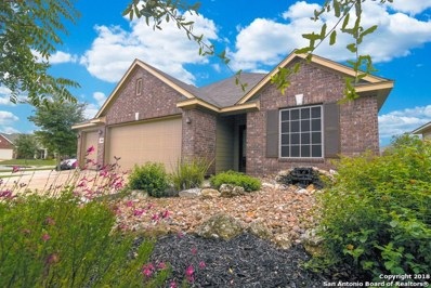 11810 Wild Pistachio, San Antonio, TX 78254 - #: 1346150