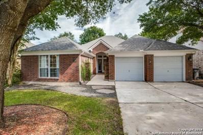 11314 Fair Hollow Dr, San Antonio, TX 78249 - #: 1346391