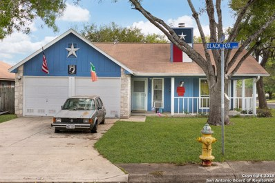 11430 Black Fox Dr, San Antonio, TX 78245 - #: 1348221