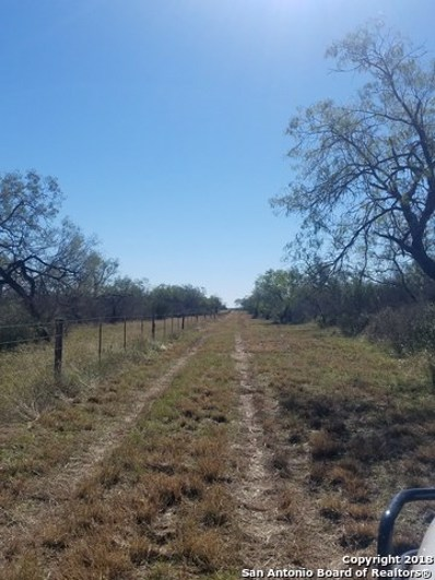3687 County Road 216, Poth, TX 78147 - #: 1349974