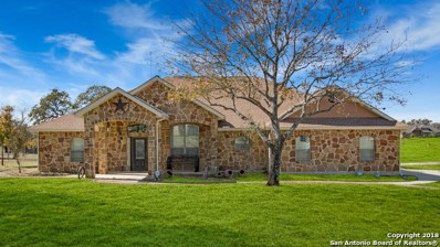 173 Abrego Lake Dr, Floresville, TX 78114 - #: 1353494