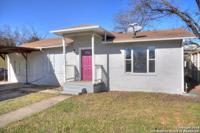 143 Hollyberry Ln, San Antonio, TX 78214 - #: 1354237