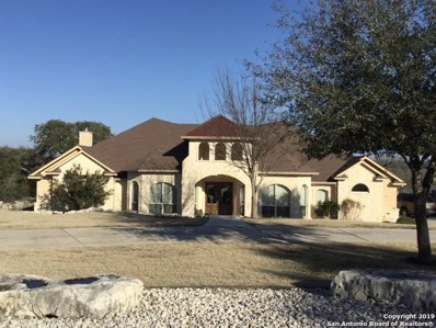 334 Whitestone Dr, Spring Branch, TX 78070 - #: 1356195