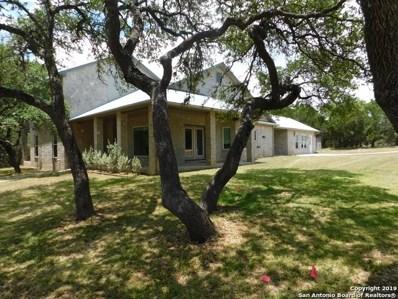 891 Bendel Ranch Rd, Canyon Lake, TX 78133 - #: 1365012