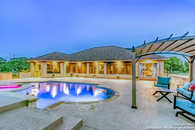 111 Mexican Hat Dr, Spring Branch, TX 78070 - #: 1387962