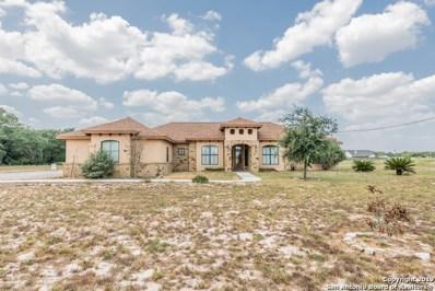 245 Shamrock Dr, Floresville, TX 78114 - #: 1395560