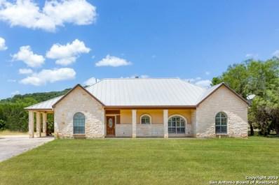16825 Scenic Loop Rd, Helotes, TX 78023 - #: 1407151
