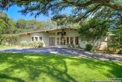 202 Yosemite Dr, Hollywood Pa, TX 78232 - #: 1409095