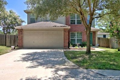 203 Goliad Dr, New Braunfels, TX 78130 - #: 1411084