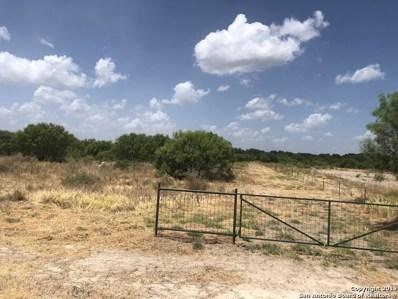 1025 Nueces River Ranch Rd, Crystal City, TX 78839 - #: 1411579