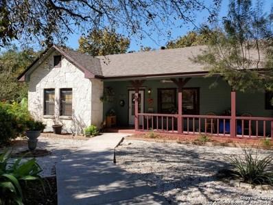 340 County Road 6768, Natalia, TX 78059 - #: 1422947