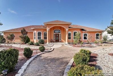 479 Lantana Mesa, Spring Branch, TX 78070 - #: 1428969