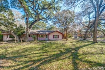 18802 Scenic Loop Rd, Helotes, TX 78023 - #: 1429541