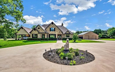 208 Riverview Place Drive, Groesbeck, TX 76642 - #: 201873