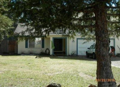 3646 Park Hill Drive, Lake Almanor, CA 96137 - #: P11175B