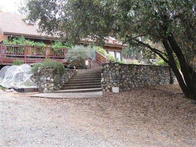 855 Timber Hills Rd, Colfax, CA 95713 - #: P111SVF
