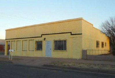 1212 E 7th St, Douglas, AZ 85607 - #: P111XSH