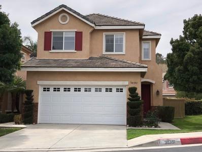30391 Cedar Oak Lane, Castaic Area, CA 91384 - #: P111YDC