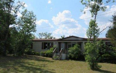 1084 Beason Road, Orangeburg, SC 29115 - #: P11223F