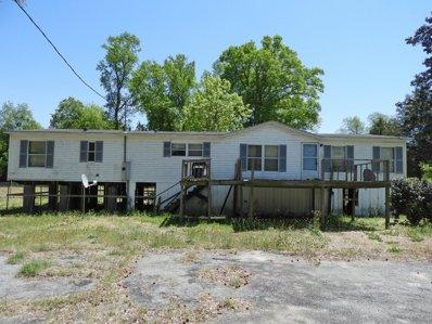 311 E Spring St, Seven Springs, NC 28578 - #: P11236R