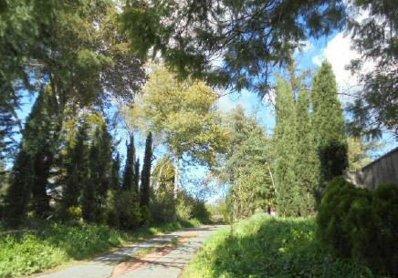 18245 Saratoga-Los Gatos Rd, Monte Sereno, CA 95030 - #: P11239C