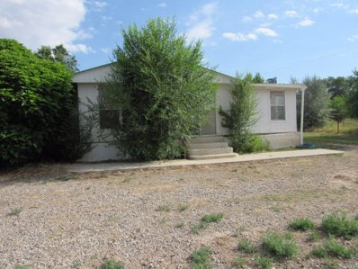 12 County Road 3053, Aztec, NM 87410 - #: P1123SQ