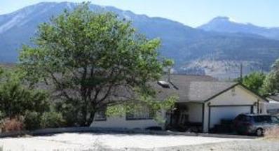 1685 Brenda Way, Washoe Valley, NV 89704 - #: P1126ZY