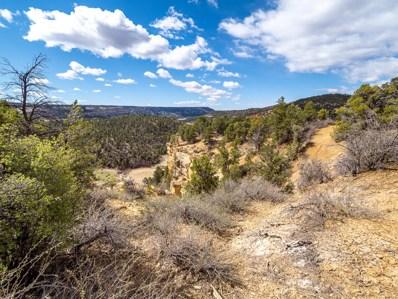 11 Acres Drywash Canyon, Glendale, UT 84729 - #: 21-222731