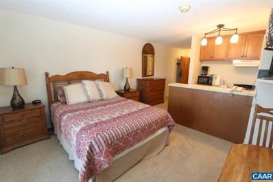 213 Timbers Condos UNIT 213, Wintergreen Resort, VA 22967 - #: 583771