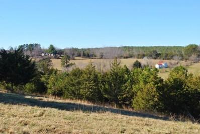 Liberty Chapel Road, Appomattox, VA 24522 - #: 309213