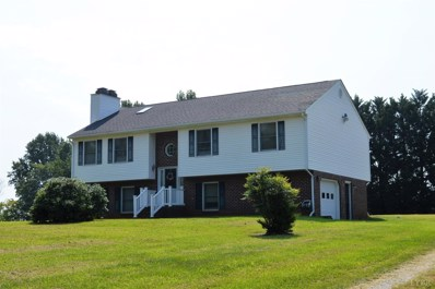 1135 Ashton Court, Goode, VA 24556 - #: 314017