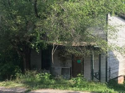 1917 Bluff Street, Lynchburg, VA 24504 - #: 318808