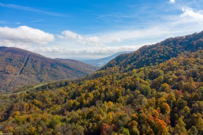 223 Acres Robertson Mountain R, Narrows, VA 24124 - #: 407162