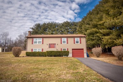 431 Ivanhoe Road, Max Meadows, VA 24360 - #: 411017