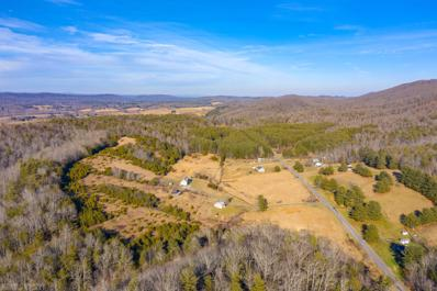 53 Acres Locust Hill Road, Max Meadows, VA 24360 - #: 411066