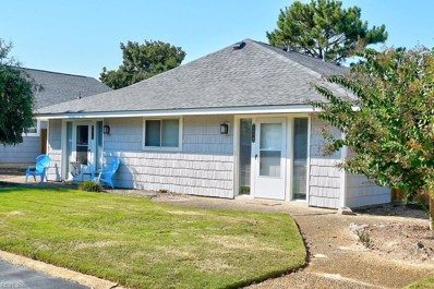 207B 56TH, Virginia Beach, VA 23451 - #: 10221645