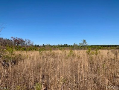 Lot 1 Hwy 45, Harrellsville, NC 27942 - #: 10243503