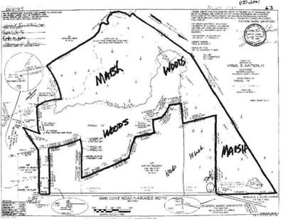 125 Ac Anns Cove, Bloxom, VA 23308 - #: 10284912